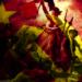 Curso Espírito revolucionário, por Cristian Derosa.